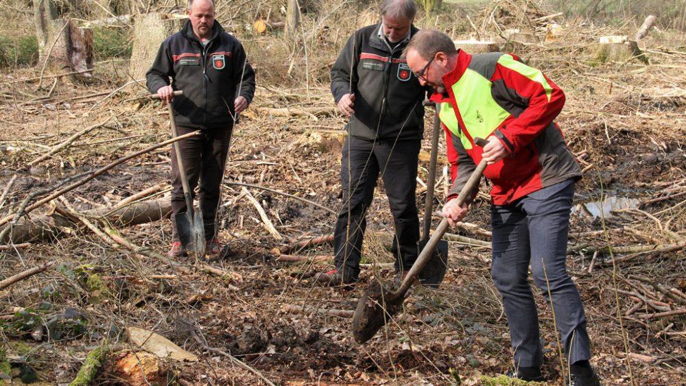 Drei Männer pflanzen Bäume.